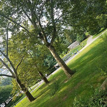 park_2 by Placenames
