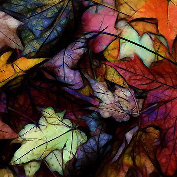 Fall Leaves Abstract by bloomingvine