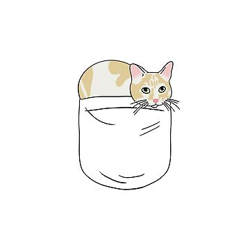 Pocket Kitty 2 by CCCDesign