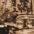 Galaxie in Sepia by NancyC