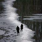 Dangerous path by Bluesrose
