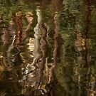 Gum Tree Reflections by Margaret Metcalfe