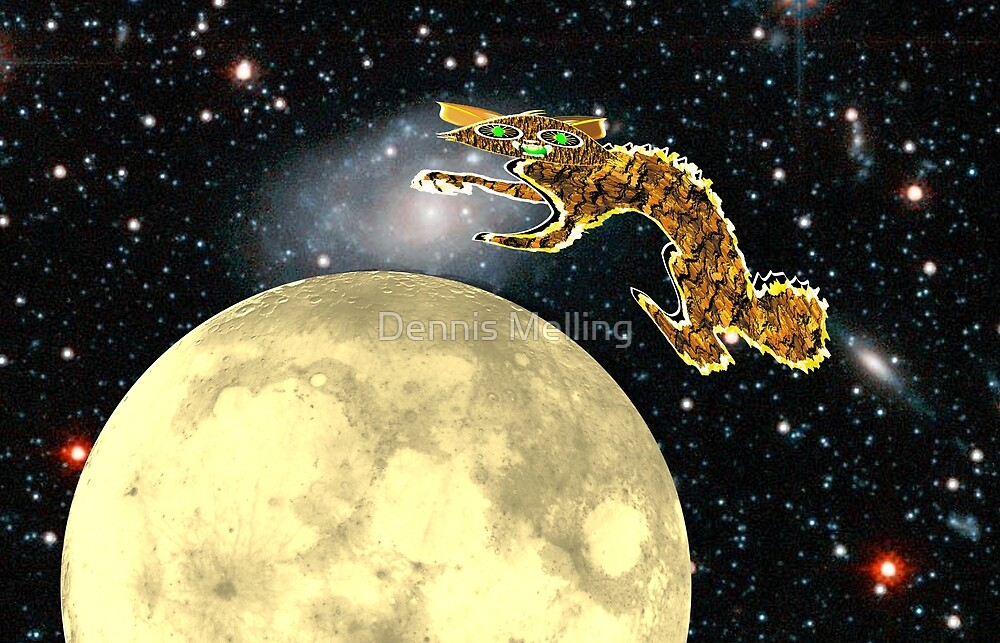 The Cat Jumped Over the Moon by Dennis Melling