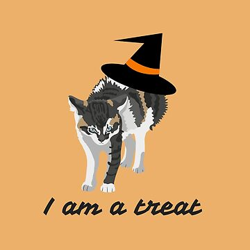 Calico Halloween cat with witch's hat by DAscroft