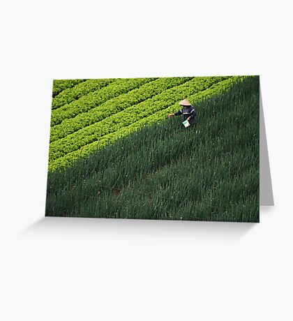 Working the field Greeting Card