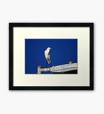 Hey, I Didn't Make This Mess! Framed Print