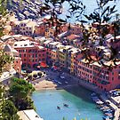 Vernazza Cinque Terre, Italy by Murray Swift