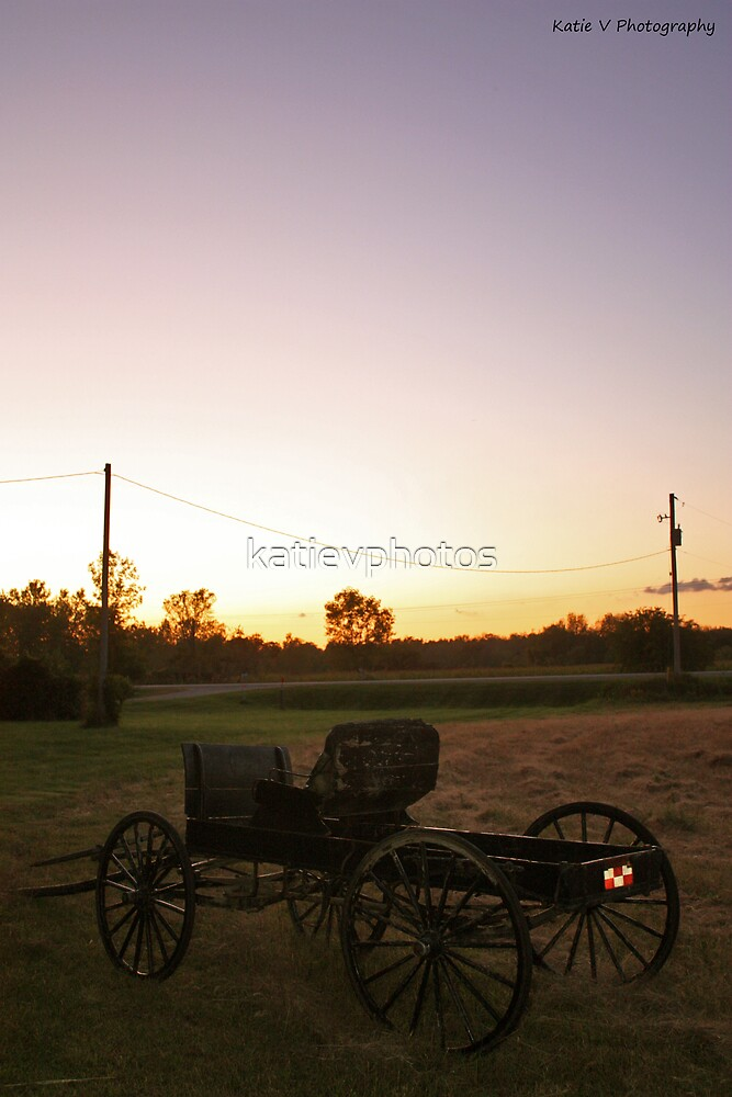 Old buggy at sunset 2 by katievphotos