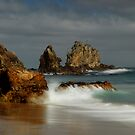 Coromandel coastline 11 by Paul Mercer