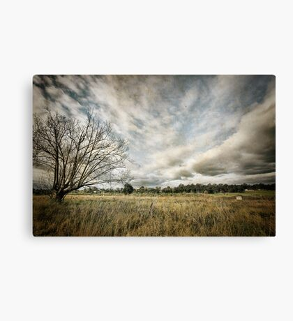 ~  you must not blame me if I do talk to the clouds ~ Canvas Print