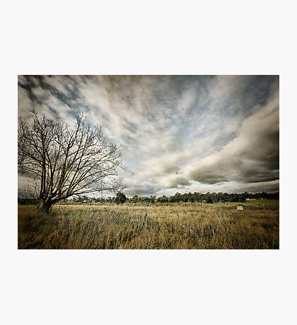 ~  you must not blame me if I do talk to the clouds ~ Photographic Print