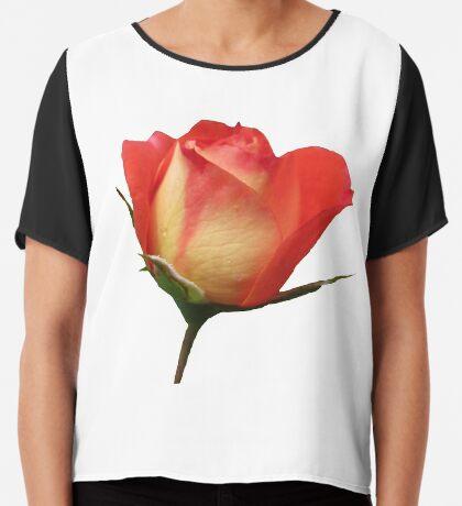 eine zauberhafte Rose mit den Tropfen des Morgentaus Chiffontop