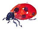 BAANTAL / Pollinate / Ladybird by ManzardCafe