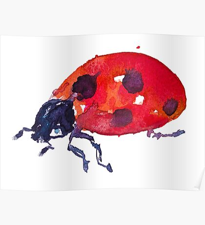 BAANTAL / Pollinate / Ladybird Poster