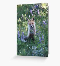 Fox sitting Greeting Card
