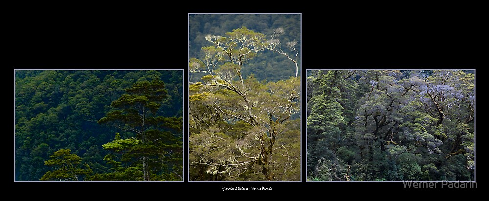 Fiordland Colours by Werner Padarin