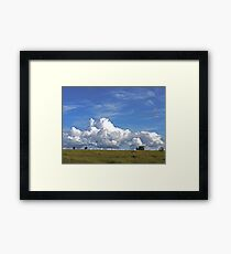 The Life of a Cow Framed Print