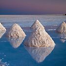 Salt mounds by DianaC