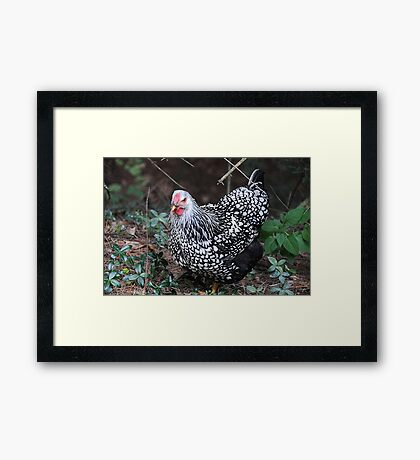 Portrait of a Visitor Framed Print