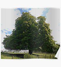The Etal Tree Poster