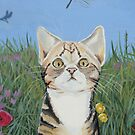 Tabby chasing a fly by Andy  Housham