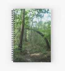 The Arch in the Forest Spiral Notebook