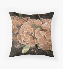 Pumpkin Spice and all thats Nice! Throw Pillow
