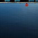 Buoy on the Quay by George Parapadakis ARPS (monocotylidono)