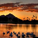 Sunset under Camelback by Sue  Cullumber
