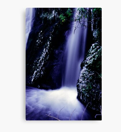 small waterfall on the Milford road Canvas Print