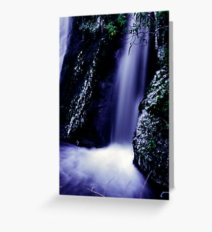 small waterfall on the Milford road Greeting Card