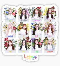 LOONA (LOOΠΔ/이달의 소녀) OT12 Flower Garden Sticker