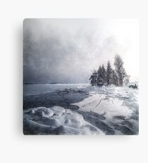 Winter & Ice Canvas Print