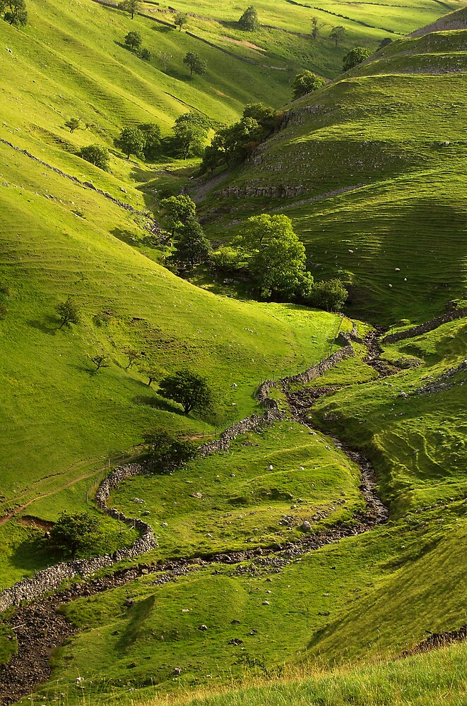 Dowber Gill Beck by Andrew Leighton