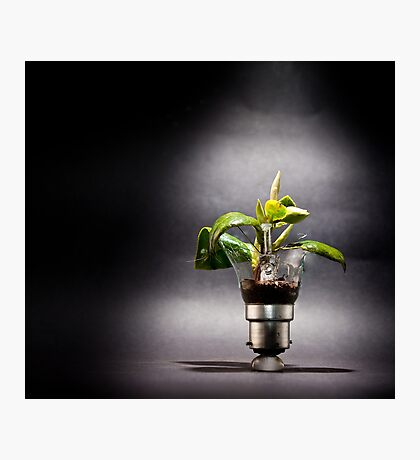 incandescent growth Photographic Print