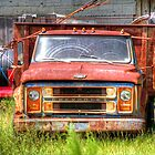 Junky old Truck and Yard by TJ Baccari Photography
