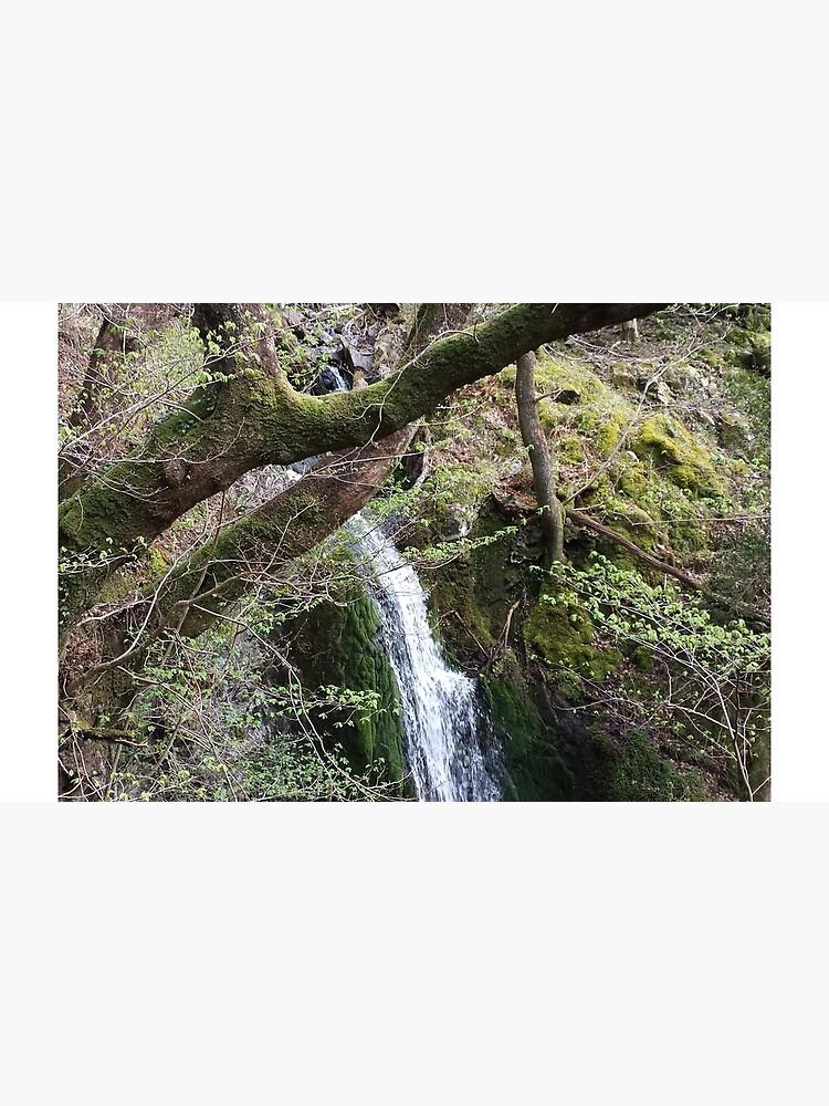 Wasserfall Szene Folie von loubylou2209