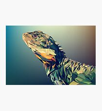 iguana digital drawing  Photographic Print