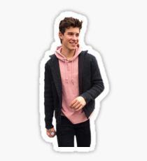 Pink shawn Sticker