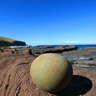 A Rock by Ian Robinson