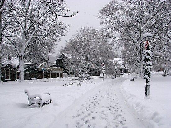 Village Green, Holiday Season, Bar Harbor, Maine by Dan Hatch