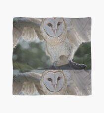Barn Owl spread Scarf