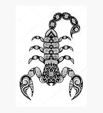 scorpio Photographic Print