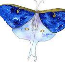 Lunar Moth by kroksg