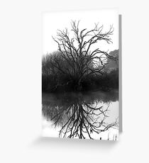 """Blackstone Tree"" B@W Greeting Card"