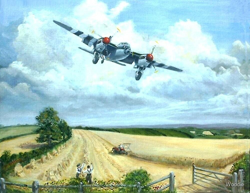 Mossie Harvest  by Woodie