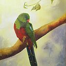 King Parrot,  Killarney country Qld Australia. by sandysartstudio