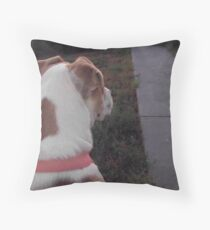 waiting for the school bus Throw Pillow