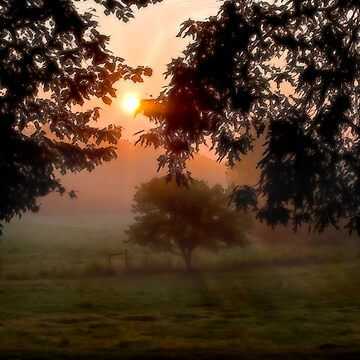 Pastoral Sunrise by djlampkins