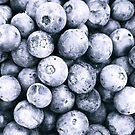 Blueberries B&W by Sue Ellen Thompson